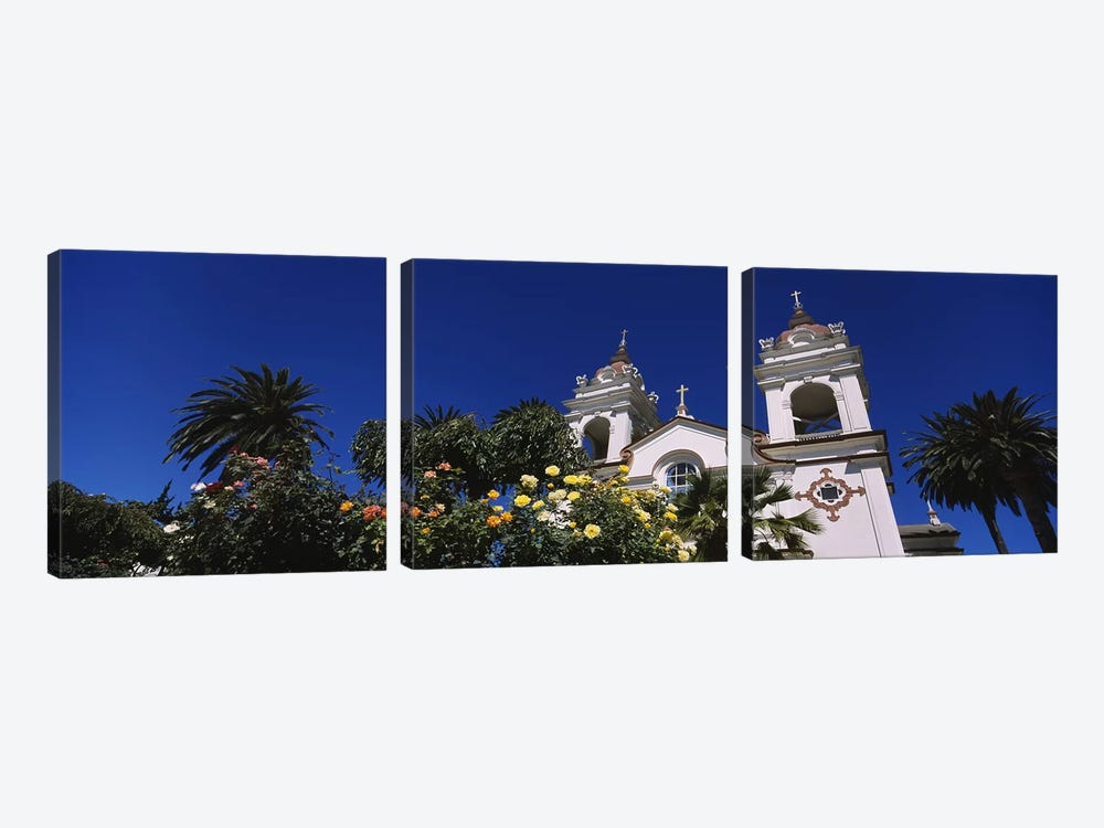 Plants in front of a cathedral, Portuguese Cathedral, San Jose, Silicon Valley, Santa Clara County, California, USA by Panoramic Images 3-piece Canvas Art Print
