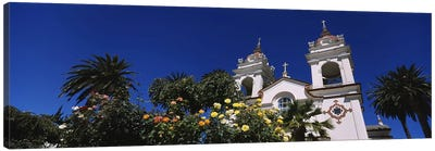 Plants in front of a cathedral, Portuguese Cathedral, San Jose, Silicon Valley, Santa Clara County, California, USA Canvas Art Print