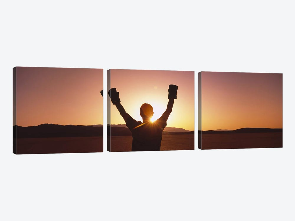 Silhouette of a person wearing boxing gloves in a desert at dusk, Black Rock Desert, Nevada, USA by Panoramic Images 3-piece Art Print