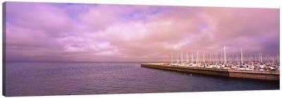 Yachts moored at a harbor, San Francisco Bay, San Francisco, California, USA Canvas Print #PIM6458