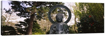 Statue of Buddha in a park, Japanese Tea Garden, Golden Gate Park, San Francisco, California, USA Canvas Print #PIM6461