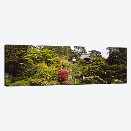 Cottage in a park, Japanese Tea Garden, Golden Gate Park, San Francisco, California, USA Canvas Print #PIM6462} by Panoramic Images Canvas Artwork