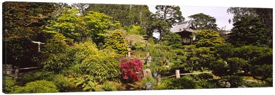 Cottage in a park, Japanese Tea Garden, Golden Gate Park, San Francisco, California, USA Canvas Print #PIM6462