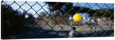 Close-up of a tennis ball stuck in a fence, San Francisco, California, USA Canvas Art Print