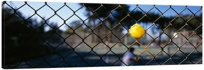 Close-up of a tennis ball stuck in a fence, San Francisco, California, USA Canvas Print #PIM6466