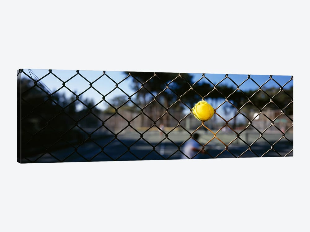 Close-up of a tennis ball stuck in a fence, San Francisco, California, USA by Panoramic Images 1-piece Canvas Art Print