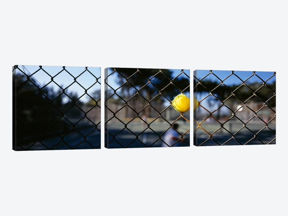 Close-up of a tennis ball stuck in a fence, San Francisco, California, USA by Panoramic Images 3-piece Art Print