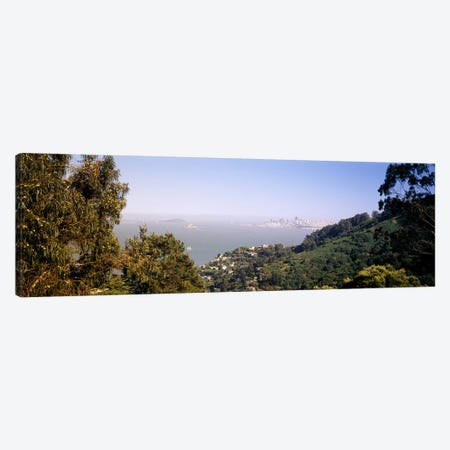 Trees on a hill, Sausalito, San Francisco Bay, Marin County, California, USA #2 Canvas Print #PIM6471} by Panoramic Images Canvas Art Print