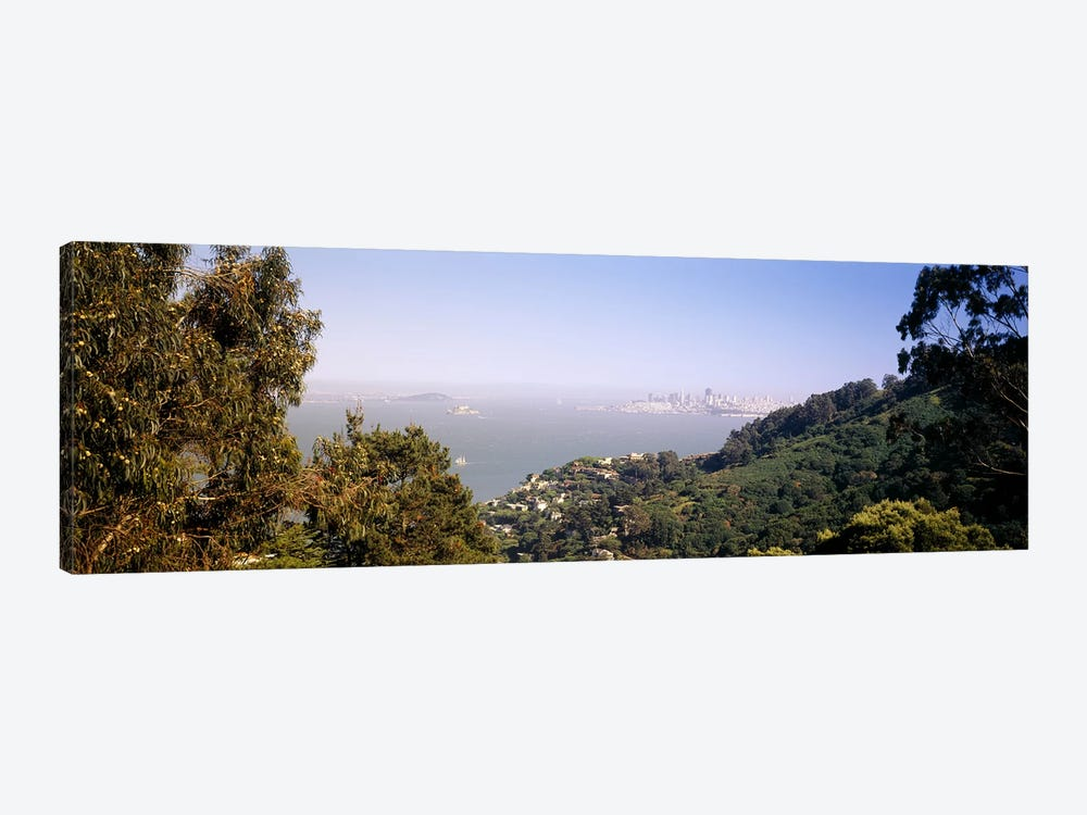 Trees on a hill, Sausalito, San Francisco Bay, Marin County, California, USA #2 by Panoramic Images 1-piece Canvas Print