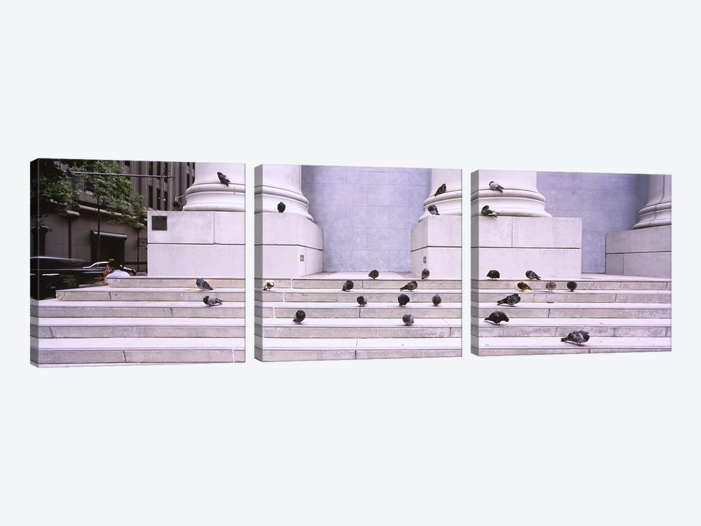 Flock of pigeons on steps, San Francisco, California, USA by Panoramic Images 3-piece Canvas Wall Art