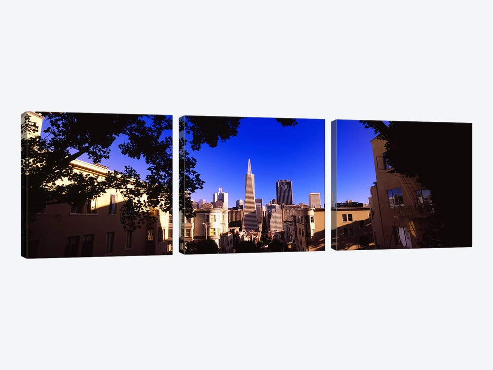 Buildings in a city, Telegraph Hill, Transamerica Pyramid, San Francisco, California, USA by Panoramic Images 3-piece Canvas Print