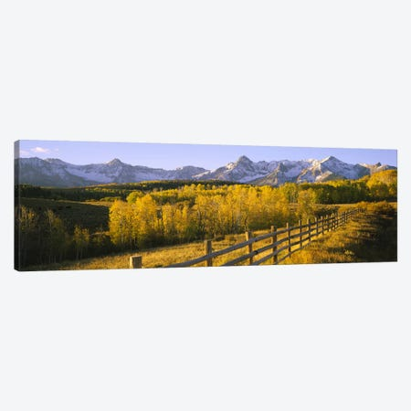 Trees in a field near a wooden fenceDallas Divide, San Juan Mountains, Colorado, USA Canvas Print #PIM6509} by Panoramic Images Canvas Art Print
