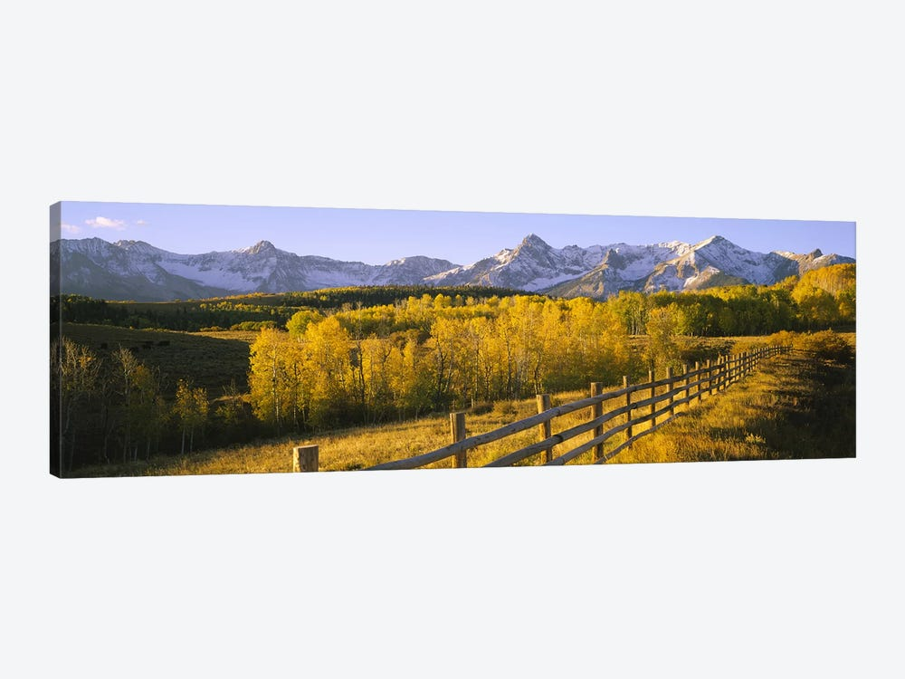 Trees in a field near a wooden fenceDallas Divide, San Juan Mountains, Colorado, USA by Panoramic Images 1-piece Canvas Art Print