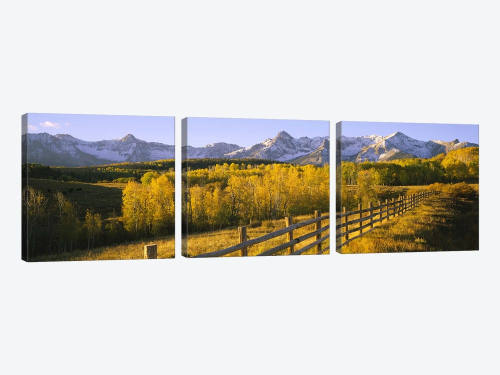 Trees in a field near a wooden fenceDallas Divide, San Juan Mountains, Colorado, USA by Panoramic Images 3-piece Canvas Art Print