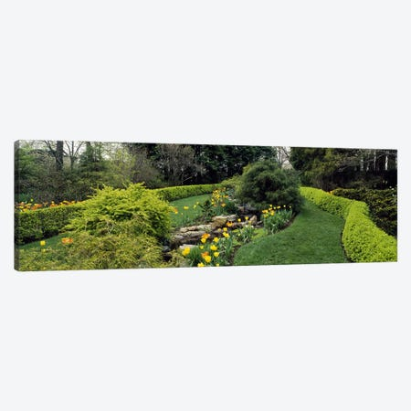 Hedge in a formal gardenLadew Topiary Gardens, Monkton, Baltimore County, Maryland, USA Canvas Print #PIM6514} by Panoramic Images Art Print