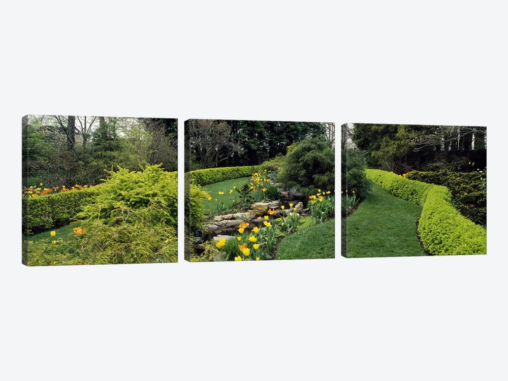 Hedge in a formal gardenLadew Topiary Gardens, Monkton, Baltimore County, Maryland, USA by Panoramic Images 3-piece Canvas Print