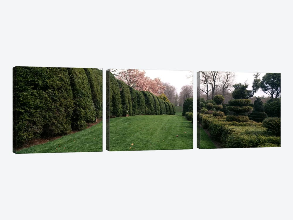 Hedge in a formal gardenLadew Topiary Gardens, Monkton, Baltimore County, Maryland, USA by Panoramic Images 3-piece Canvas Artwork
