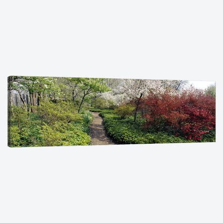 Trees in a gardenGarden of Eden, Ladew Topiary Gardens, Monkton, Baltimore County, Maryland, USA Canvas Print #PIM6516} by Panoramic Images Canvas Art Print