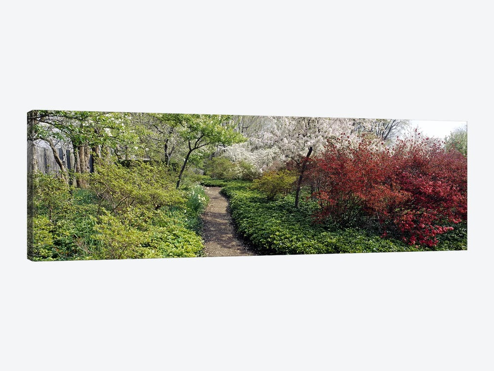 Trees in a gardenGarden of Eden, Ladew Topiary Gardens, Monkton, Baltimore County, Maryland, USA by Panoramic Images 1-piece Canvas Art Print