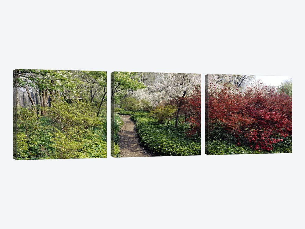 Trees in a gardenGarden of Eden, Ladew Topiary Gardens, Monkton, Baltimore County, Maryland, USA by Panoramic Images 3-piece Art Print