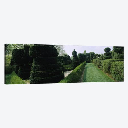 Sculptures formed from trees and plants in a garden, Ladew Topiary Gardens, Monkton, Baltimore County, Maryland, USA Canvas Print #PIM6539} by Panoramic Images Canvas Artwork