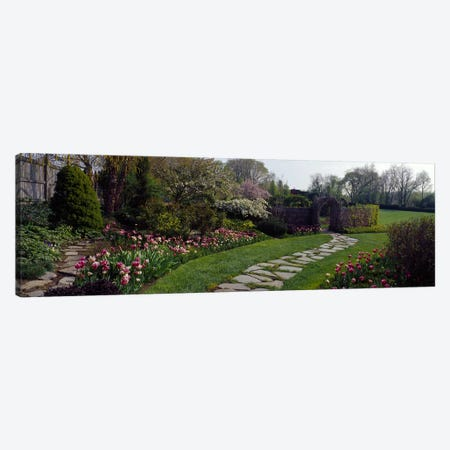 Flowers in a garden, Ladew Topiary Gardens, Monkton, Baltimore County, Maryland, USA Canvas Print #PIM6540} by Panoramic Images Art Print