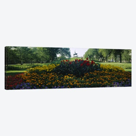 Flowers in a park, Grant Park, Chicago, Cook County, Illinois, USA Canvas Print #PIM6541} by Panoramic Images Canvas Print