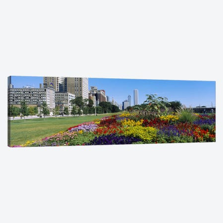 Flowers in a garden, Welcome Garden, Grant Park, Michigan Avenue, Roosevelt Road, Chicago, Cook County, Illinois, USA Canvas Print #PIM6546} by Panoramic Images Canvas Art