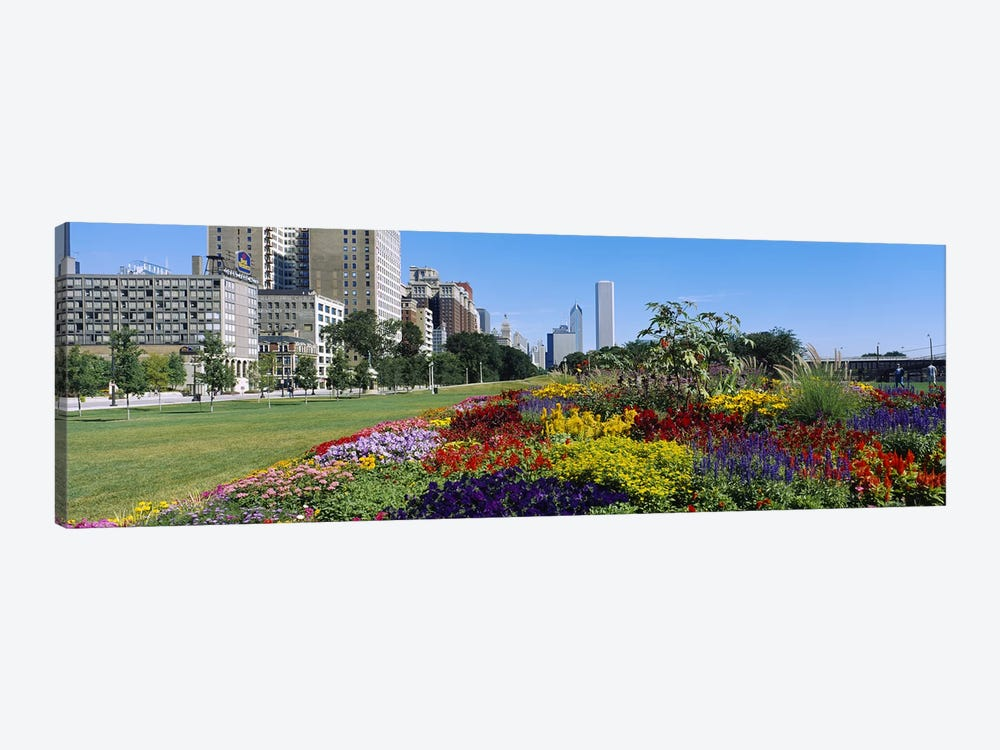 Flowers in a garden, Welcome Garden, Grant Park, Michigan Avenue, Roosevelt Road, Chicago, Cook County, Illinois, USA by Panoramic Images 1-piece Canvas Artwork
