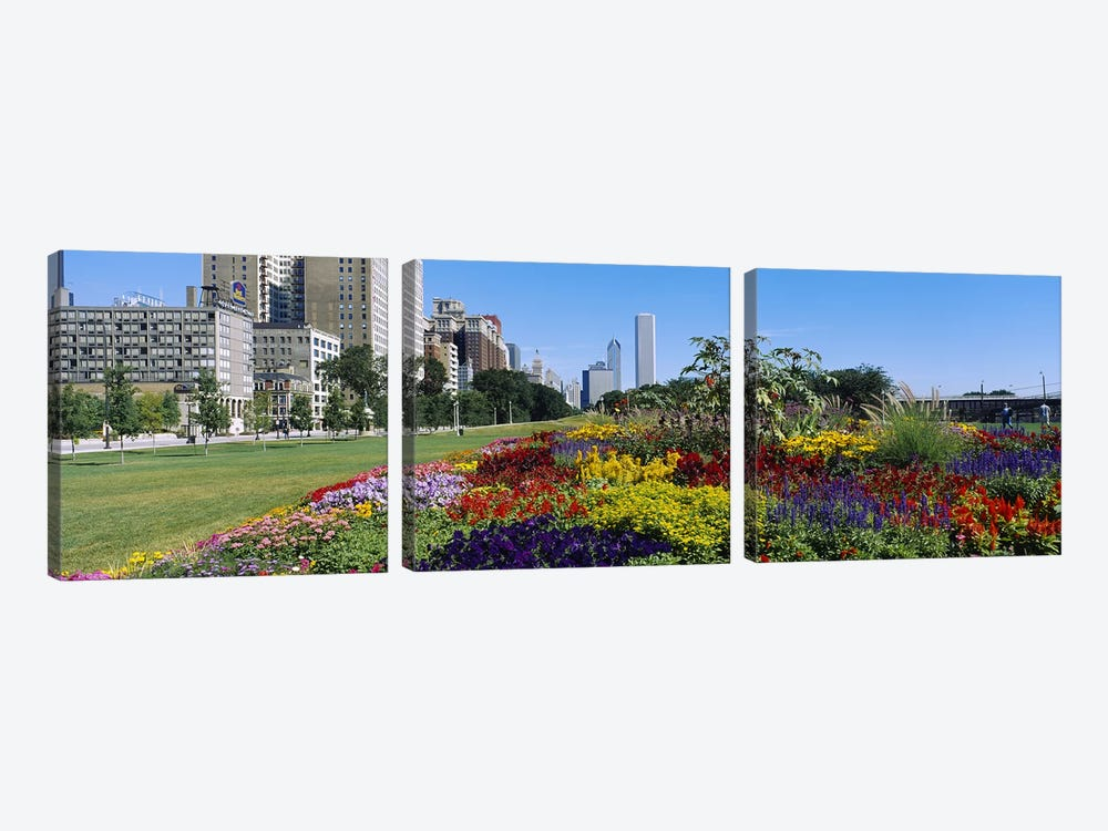 Flowers in a garden, Welcome Garden, Grant Park, Michigan Avenue, Roosevelt Road, Chicago, Cook County, Illinois, USA by Panoramic Images 3-piece Canvas Wall Art