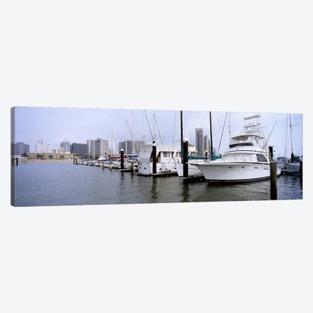 Yachts at a harbor with buildings in the background, Corpus Christi, Texas, USA Canvas Print #PIM6560} by Panoramic Images Canvas Art Print