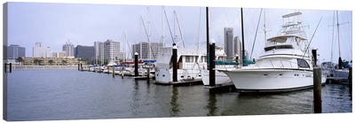 Yachts at a harbor with buildings in the background, Corpus Christi, Texas, USA Canvas Print #PIM6560