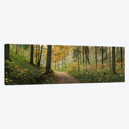 Road Through An Autumnal Forest Landscape, Baden-Wurttemberg, Germany 3-Piece Canvas #PIM6566} by Panoramic Images Canvas Wall Art