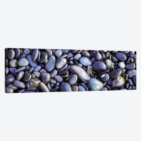 Close-up of pebbles, Sandymouth Beach, Cornwall, England Canvas Print #PIM6600} by Panoramic Images Canvas Wall Art