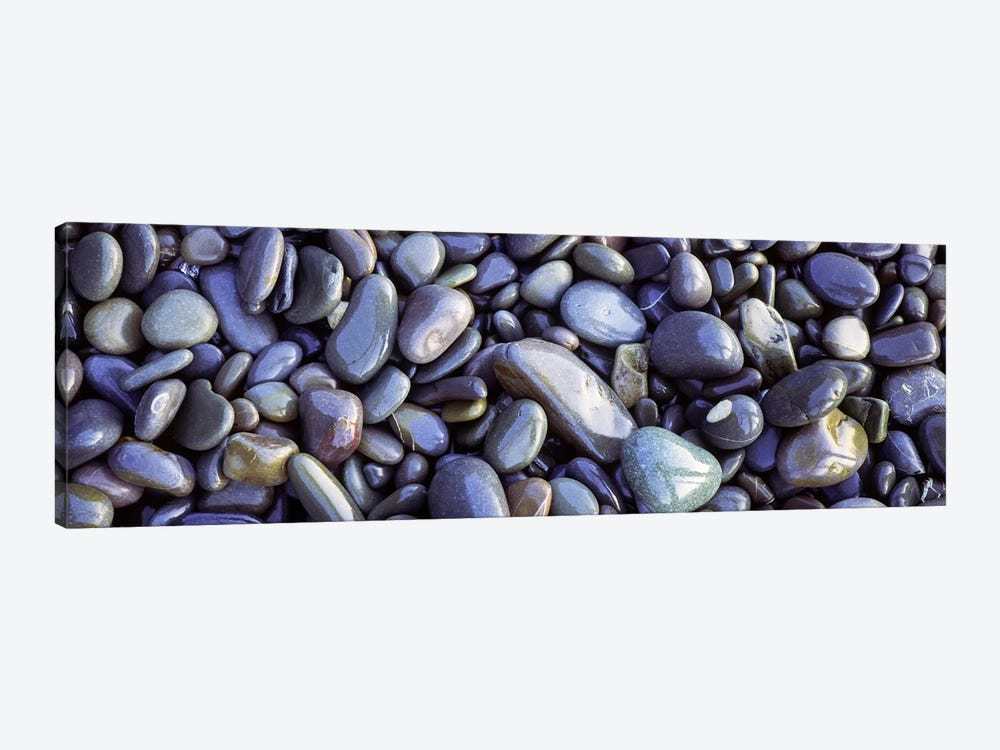 Close-up of pebbles, Sandymouth Beach, Cornwall, England by Panoramic Images 1-piece Canvas Wall Art