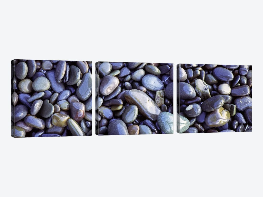 Close-up of pebbles, Sandymouth Beach, Cornwall, England by Panoramic Images 3-piece Canvas Wall Art