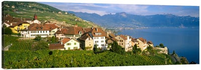 Village Rivaz between Vineyards & Mts. Lake Geneva Switzerland Canvas Print #PIM666