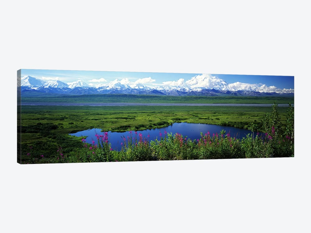 Spring Landscape, Denali National Park, Alaska, USA by Panoramic Images 1-piece Canvas Wall Art