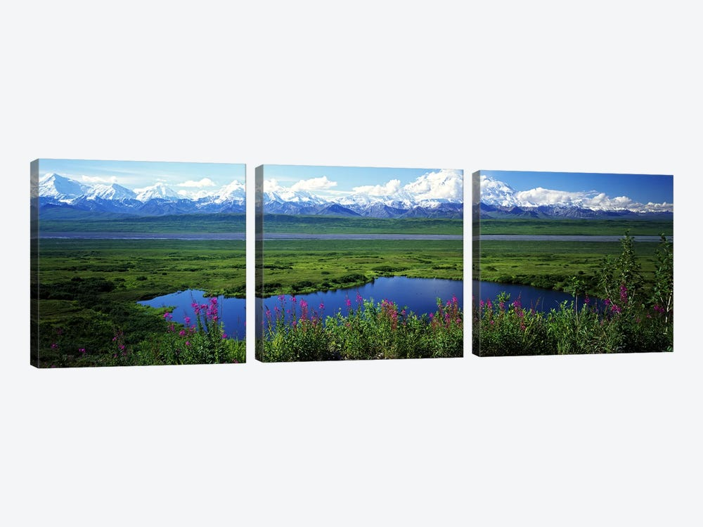 Spring Landscape, Denali National Park, Alaska, USA by Panoramic Images 3-piece Canvas Artwork