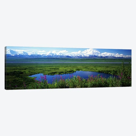 Spring Landscape, Denali National Park, Alaska, USA Canvas Print #PIM6723} by Panoramic Images Canvas Art Print
