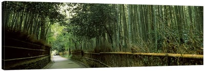 Road passing through a bamboo forest, Arashiyama, Kyoto Prefecture, Kinki Region, Honshu, Japan Canvas Art Print