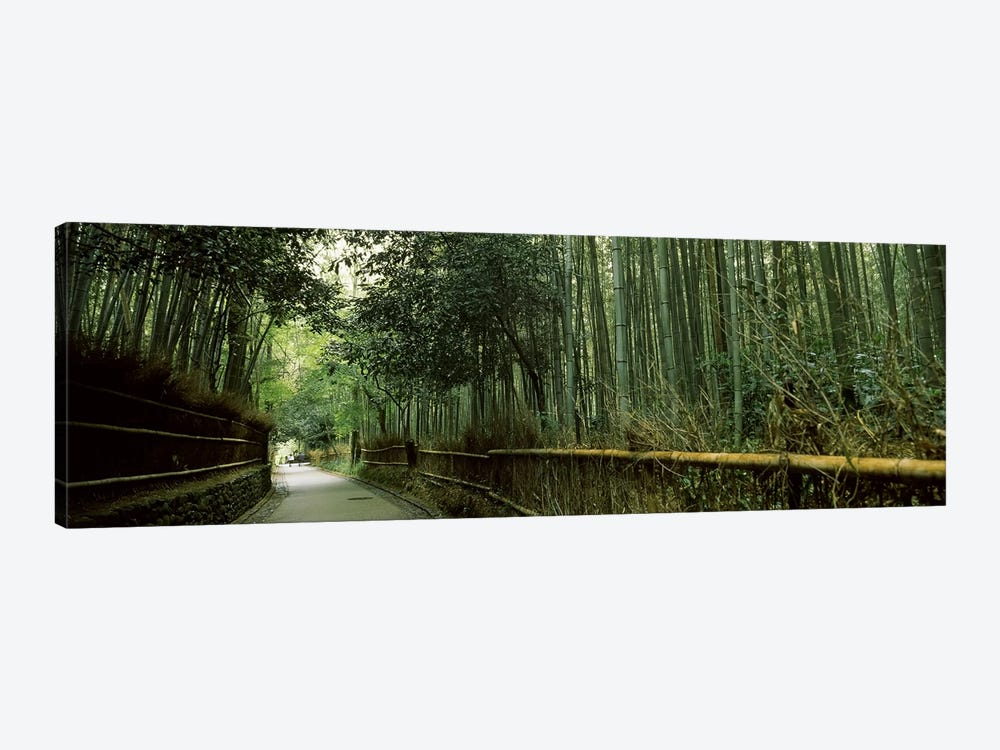 Road passing through a bamboo forest, Arashiyama, Kyoto Prefecture, Kinki Region, Honshu, Japan by Panoramic Images 1-piece Canvas Art