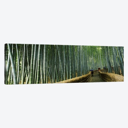 Stepped walkway passing through a bamboo forest, Arashiyama, Kyoto Prefecture, Kinki Region, Honshu, Japan Canvas Print #PIM6814} by Panoramic Images Canvas Wall Art