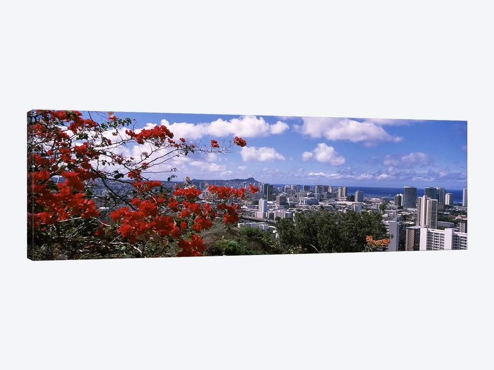 High angle view of a cityscape, Honolulu, Oahu, Hawaii, USA #2 by Panoramic Images 1-piece Canvas Wall Art