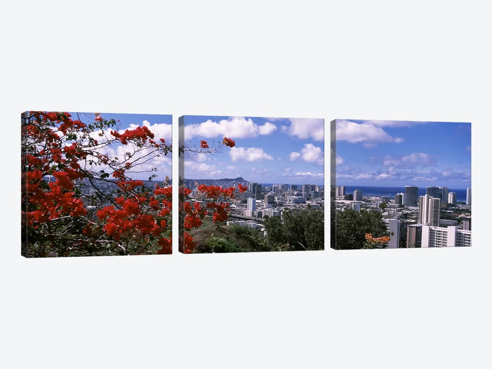 High angle view of a cityscape, Honolulu, Oahu, Hawaii, USA #2 by Panoramic Images 3-piece Canvas Artwork