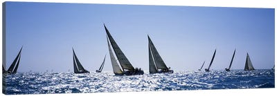 Sailboats racing in the sea, Farr 40's race during Key West Race Week, Key West Florida, 2000 Canvas Art Print