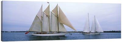 Schooners Under Way, Narragansett Bay, Newport, Rhode Island, USA Canvas Print #PIM6882
