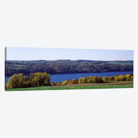 Trees at the lakeside, Owasco Lake, Finger Lakes, New York State, USA Canvas Print #PIM6908} by Panoramic Images Art Print