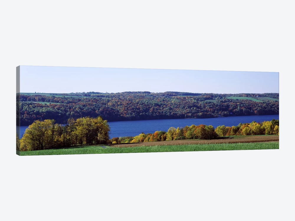 Trees at the lakeside, Owasco Lake, Finger Lakes, New York State, USA by Panoramic Images 1-piece Canvas Art