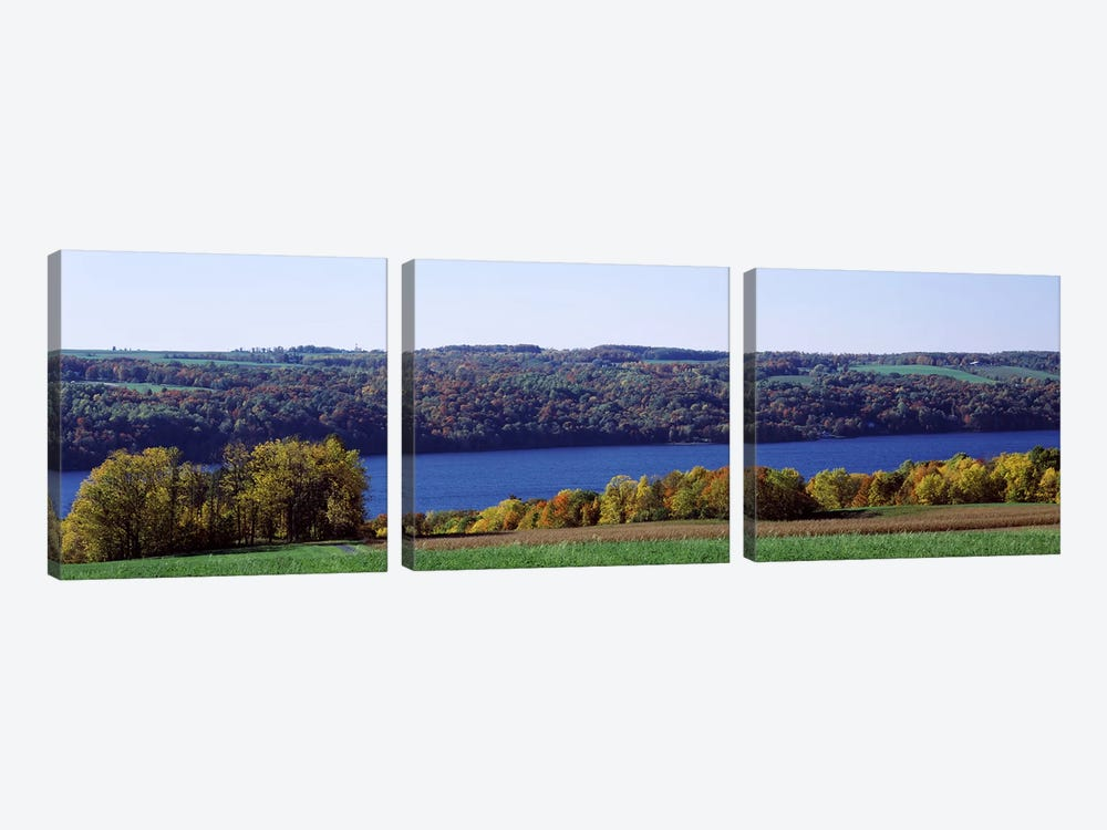 Trees at the lakeside, Owasco Lake, Finger Lakes, New York State, USA by Panoramic Images 3-piece Canvas Art